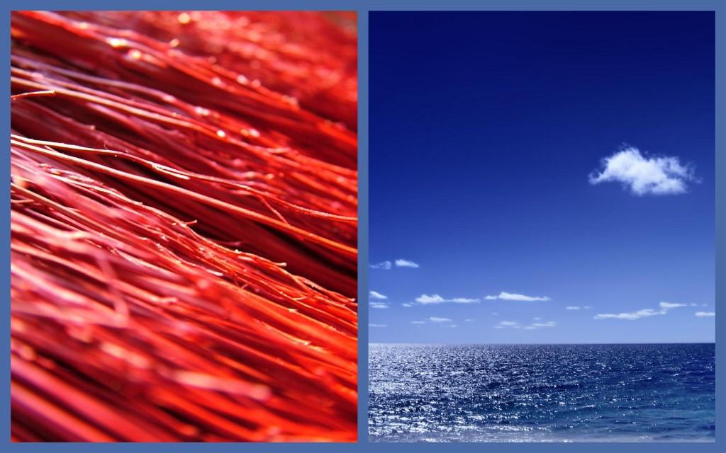 oceanos-rojos-oceanos-azules