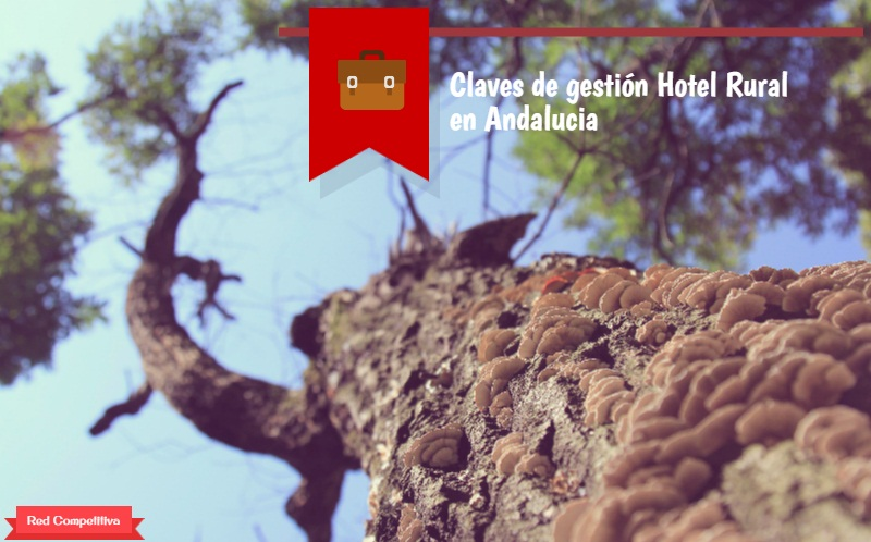 claves-gestion-hotel-rural-1