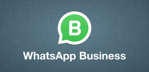 whatsapp business turismo