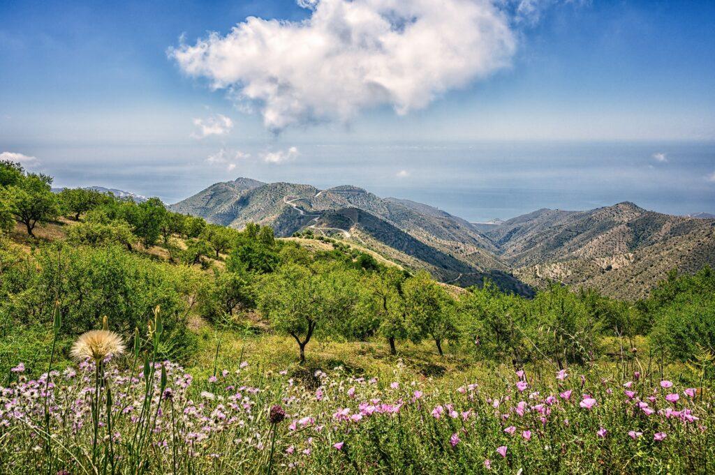 paisaje en Andalucía