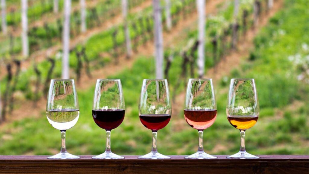 catas de vino en Andalucía