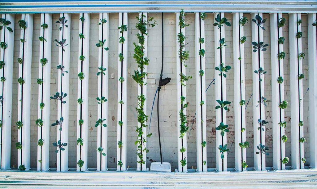 Jardín vertical en la azotea de un hotel