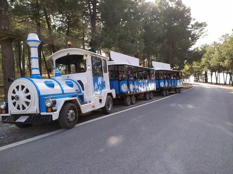 Tren del Patrimonio Huércal Granada ecorutas en tren